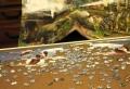 Bilderpuzzle als Wand Deko – die rätselhafte Deko!