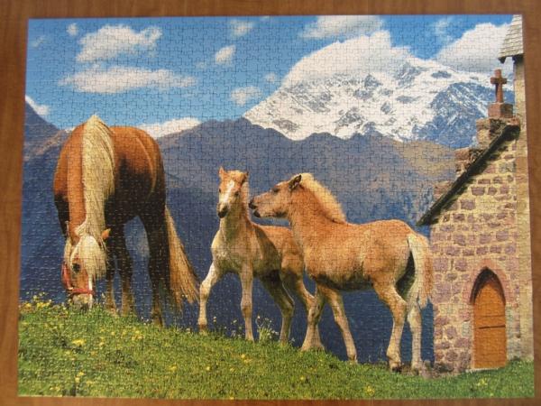 puzzle-ravensburger-haflinger-horses-