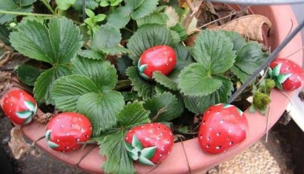rote-Erdbeeren-verzierte- Steine-als-Dekoration-für-den-Garten