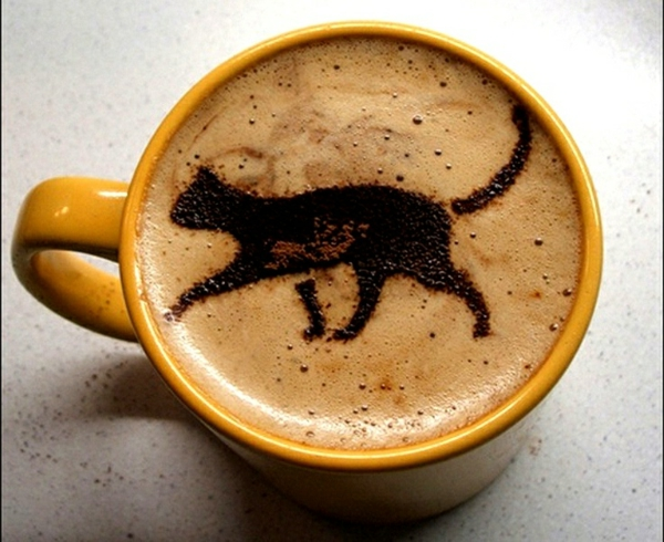Kaffee-originelles-Bild-schwarze-Katze