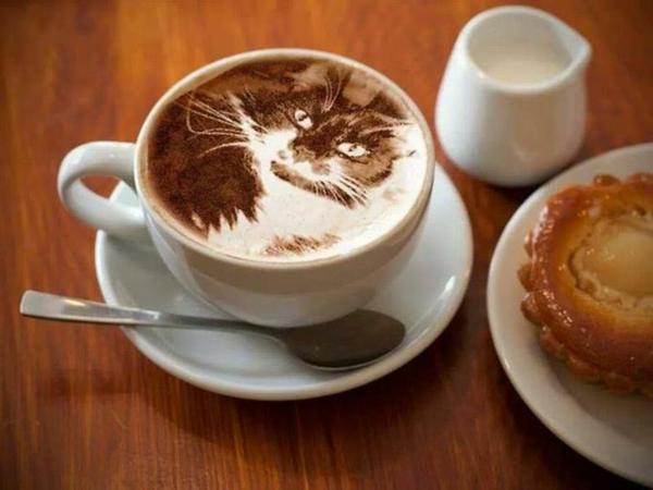 erstaunliche-Katze-Kaffeart-Dekorationsidee