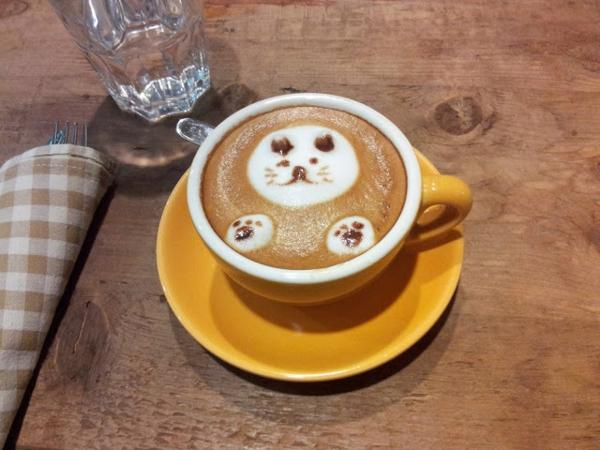 Katze-Kaffee-schönes-Bild-Idee