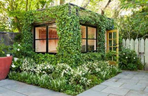 immergrüne kletterpflanzen - tolle bilder! - archzine, Hause und garten