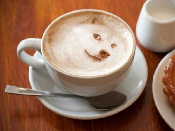 Lustige-kaffee-bilder-wolf