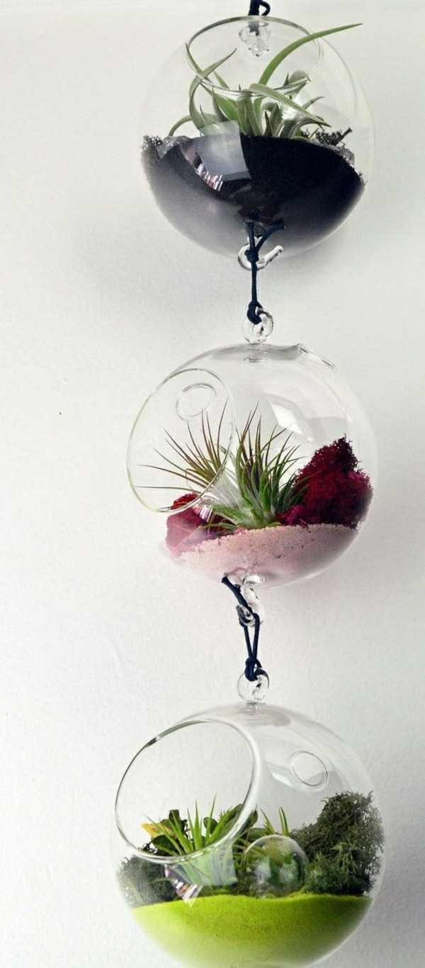 Terrarium-selbst-bauen-hängende-deko (2)