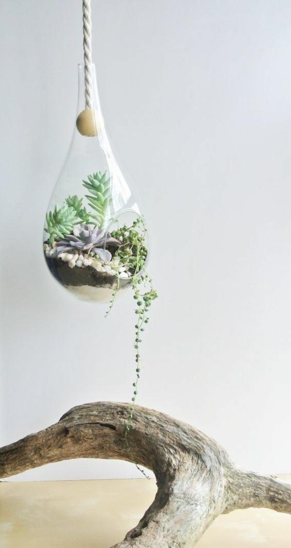 Terrarium-selbst-bauen-hängende-dekoration
