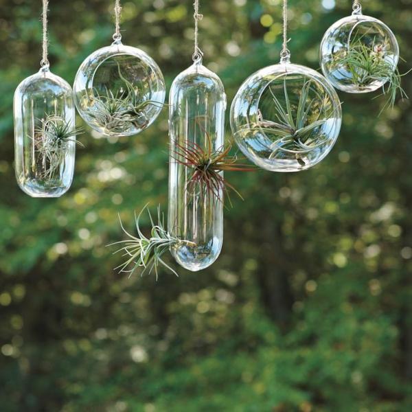 Terrarium-selbst-bauen-hängende