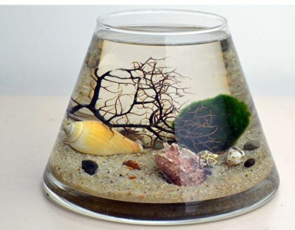 Terrarium-selbst-bauen-im-wasser