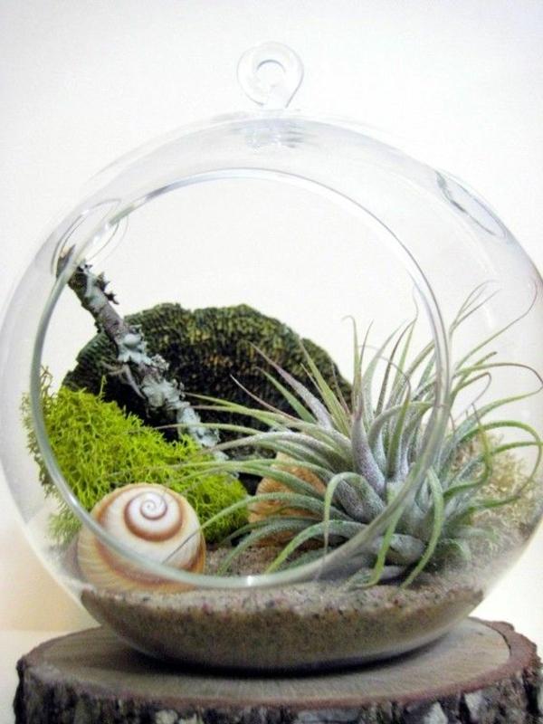 Terrarium-selbst-bauen-offen