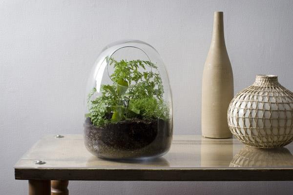 Terrarium-selbst-bauen-recycliertes-Glas-Deko-Zuhause-Ideen