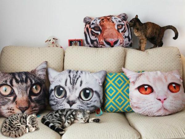 Wohnungsgestaltung-Ideen-kissen-katzen