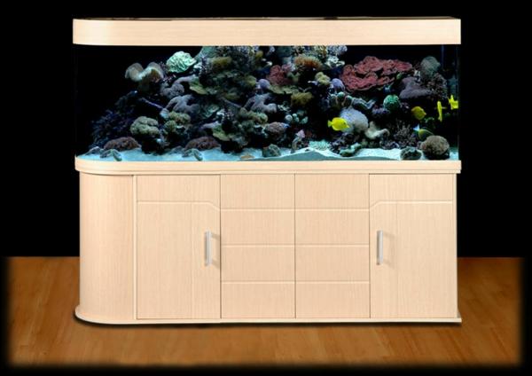 aquarium-raumteiler-beige-unterschrank - schwarzer hintergrund