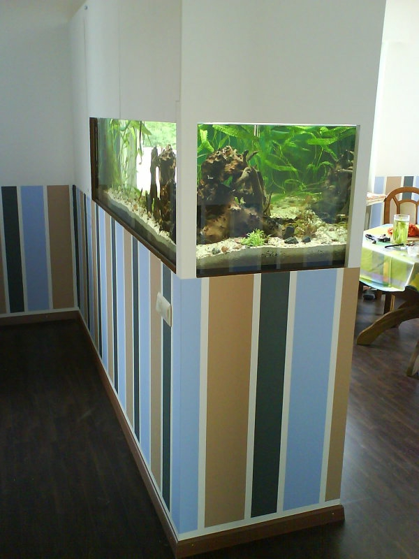 aquarium-raumteiler-eine-wand-auf-streifen - neben dem esszimmer