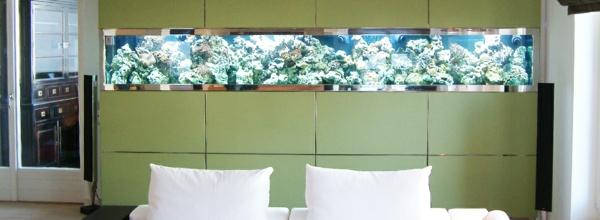 aquarium-raumteiler-hinter-einem-weißen-bett - grüne farbe der wand