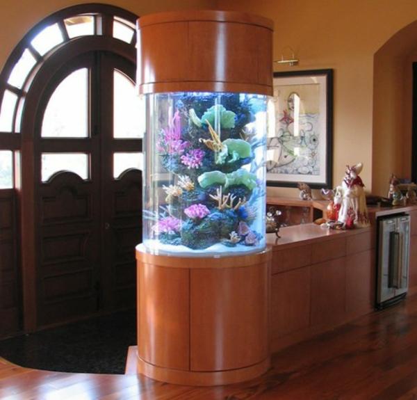 aquarium-raumteiler-im-haus - mit einer wunderschönen tür