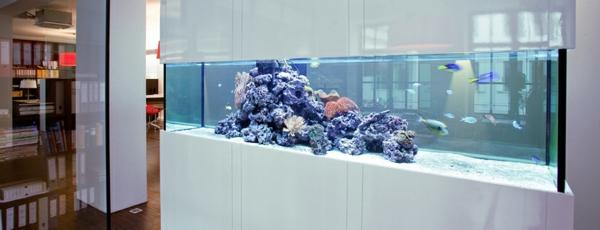 aquarium-raumteiler-modern-gestaltet-in-weißer-farbe
