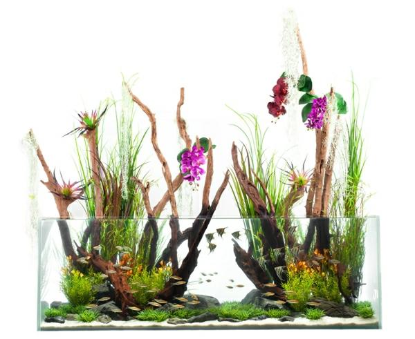 aquarium-raumteiler-weißer-hintergrund