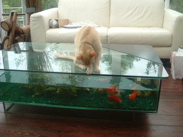 aquariumtisch kreative entscheidung f r ihr zuhause. Black Bedroom Furniture Sets. Home Design Ideas