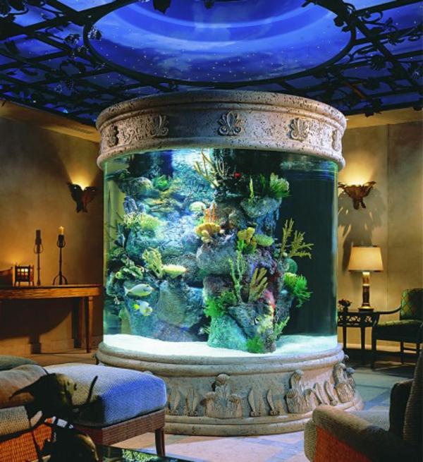 außergewöhnliche-dekoration-aquarium