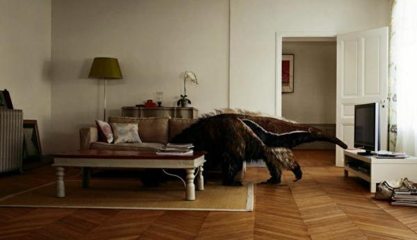schönes wohnzimmer im skandinavischen stil