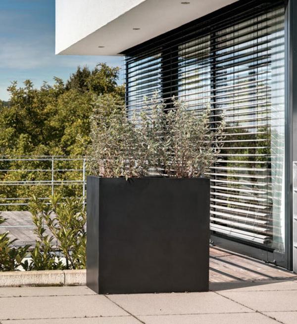 blumenkübel-in-schwarz-auf-der-terrasse- neben jalousien