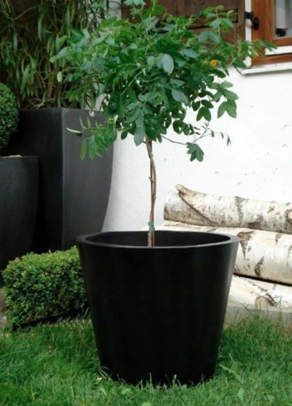 blumenkübel-in-schwarz-im-garten- grünes gras