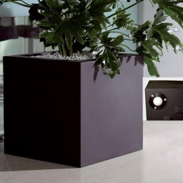 blumenkübel-in-schwarz-sehr-groß-und-schön- interessantes foto