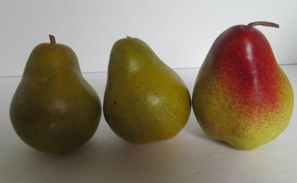 drei-grünen-Birnen-Obst-Dekoidee
