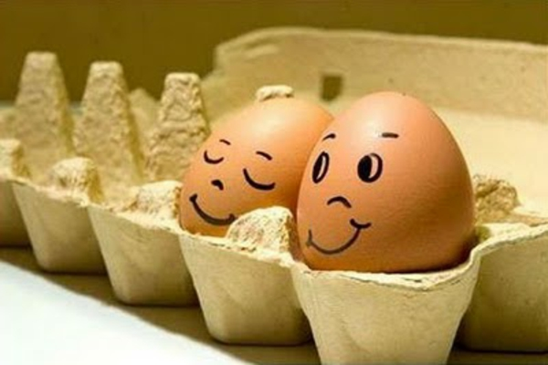 tolle-gemalte-eier-im-eierkarton
