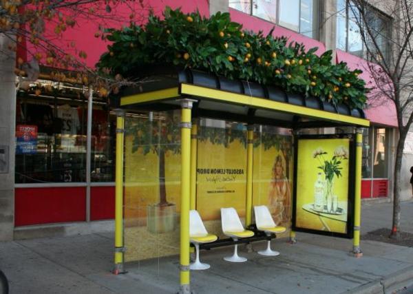 gelbe-Bushaltestelle-mit-pflanzen-auf-dem-dach-orangen