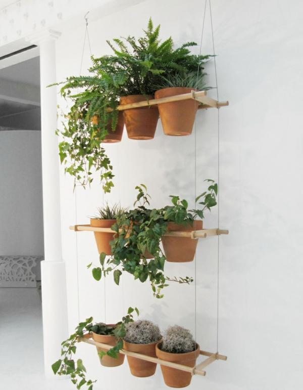 H ngende zimmerpflanzen k nnen die beste h nge for Pflanzen deko wand