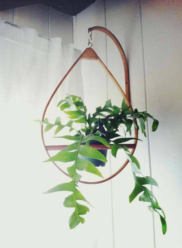 hängende-zimmerpflanzen-dreieckig