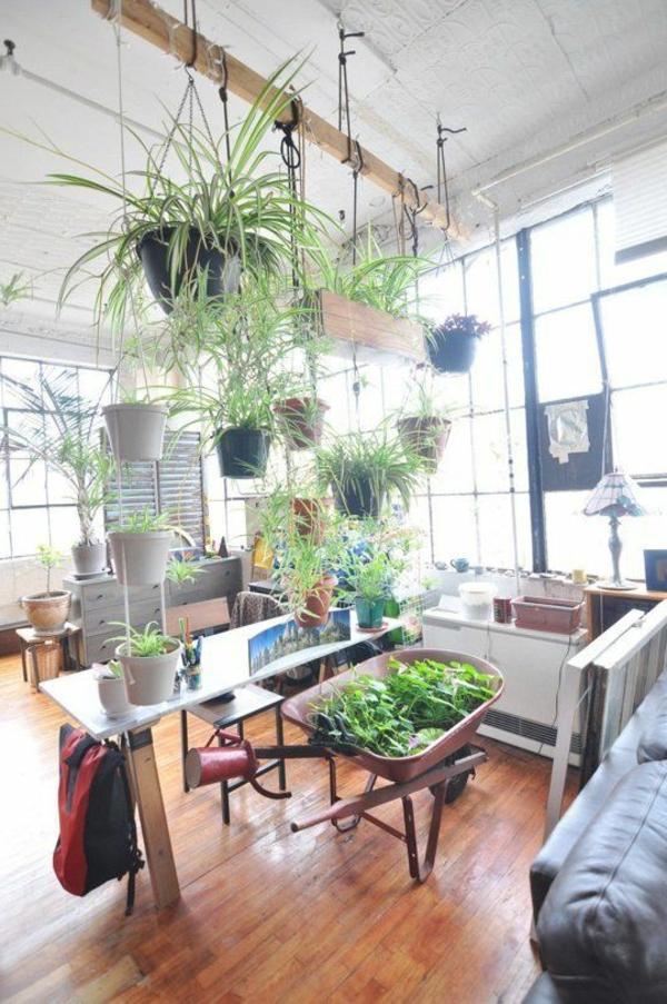 hängende-zimmerpflanzen-holz-henkel