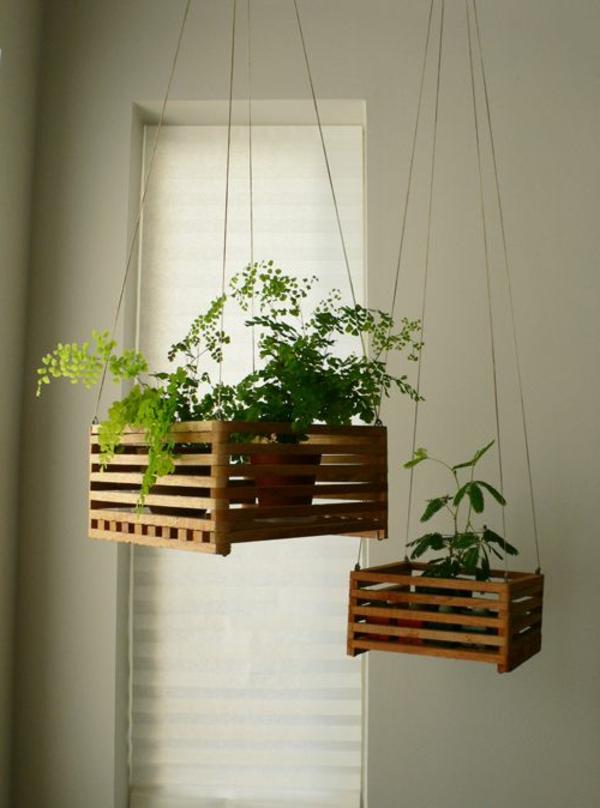 hängende-zimmerpflanzen-holz-kisten