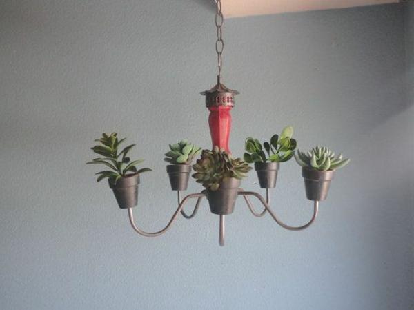 hängende-zimmerpflanzen-kronleuchter