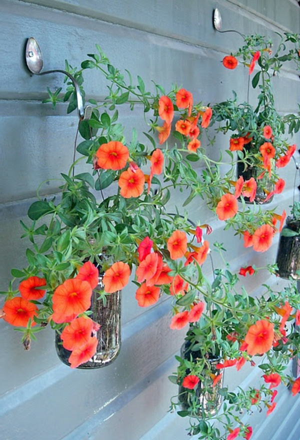 hängende-zimmerpflanzen-löfel-hänger