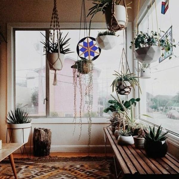 h ngende zimmerpflanzen k nnen die beste h nge dekoration sein. Black Bedroom Furniture Sets. Home Design Ideas