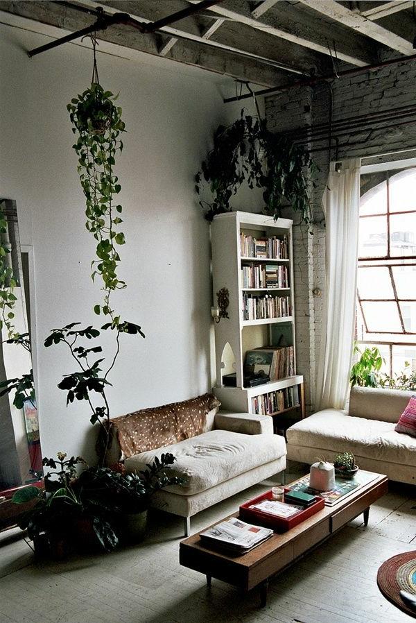 hängende-zimmerpflanzen-wohnzimmer