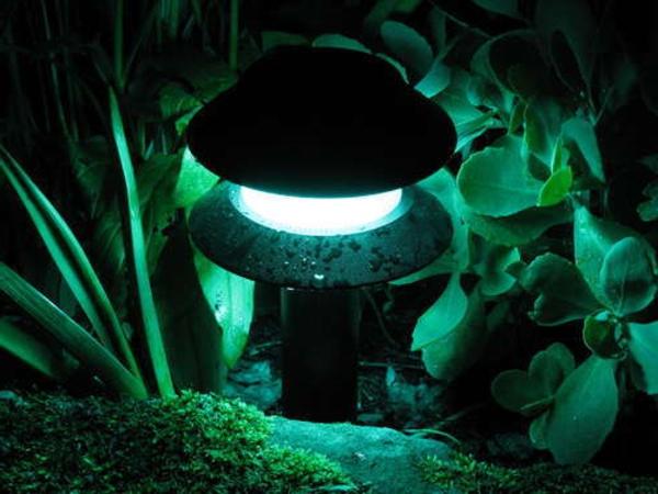 led-gartenbeleuchtung-grüne pflanzen darum