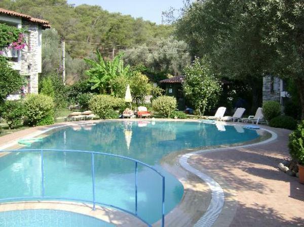 interessante-Poolgestaltungsidee-für-den-Garten