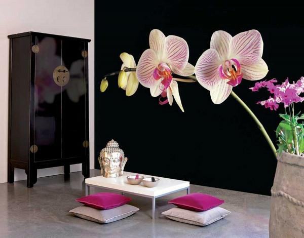 orientalische-dekoration-für-wohnzimmer-weiße-orchideen