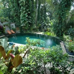 Traumgarten - erstaunliche Bilder!