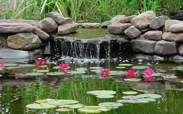 teich-bepflanzen-mit-einem-wasserfall