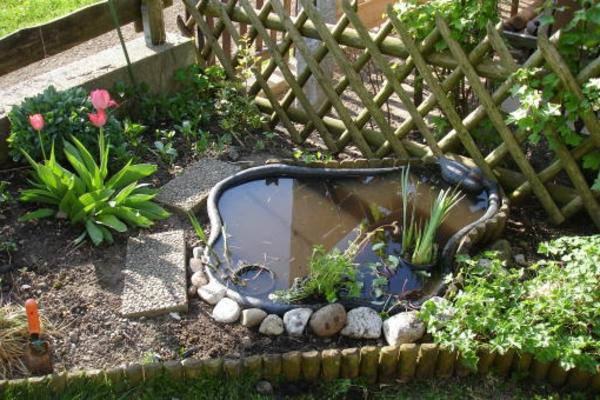 teich-bepflanzen-moderne-idee-für-gärten
