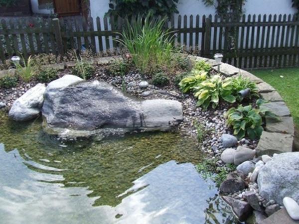 Teich bepflanzen 65 super ideen for Steine im teich