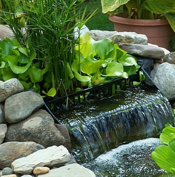 teich-bepflanzen-super-gestaltet