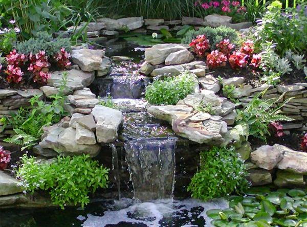 Teich bepflanzen 65 super ideen for Steine fur gartenteich