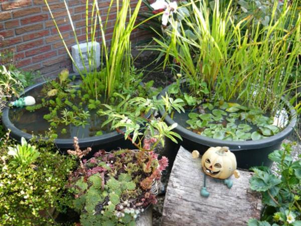 teich-bepflanzen-verblüffende-idee