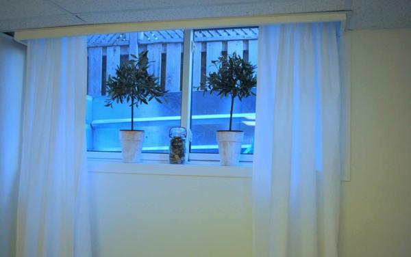 weißer-keller-mit-gardinen-für-kleine-fenster- zwei grüne pflanzen