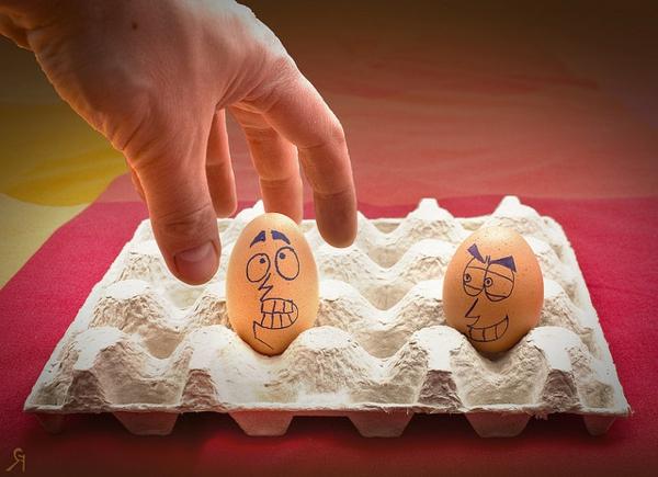 zwei-eier-mitgesichter-im-eierkarton-lustige-bilder